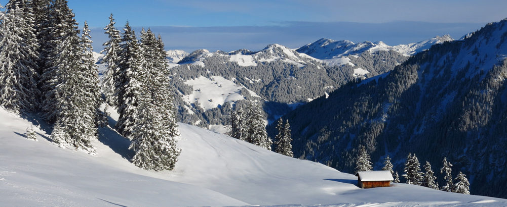 Winter Programme – Training & Snow-Driving 2019